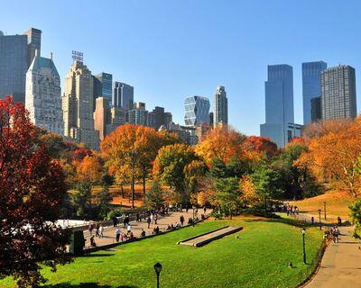 central park - Españoles en Nueva York